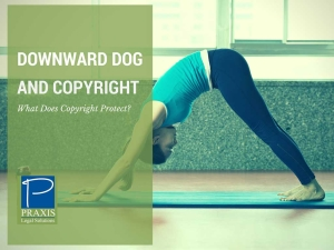 Downward Dog and Copyright